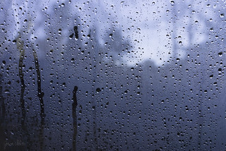 Wet week