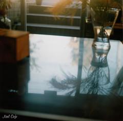 虚実 by Noël Café