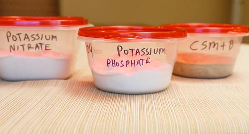 dry fertilizers for planted aquarium EI dosing: potassium nitrate, potassium phosphate, CSM + B