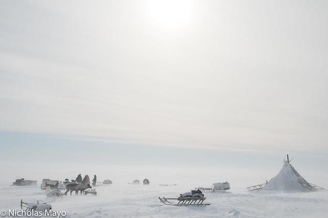Tundra Camp