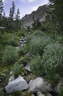 Up creek