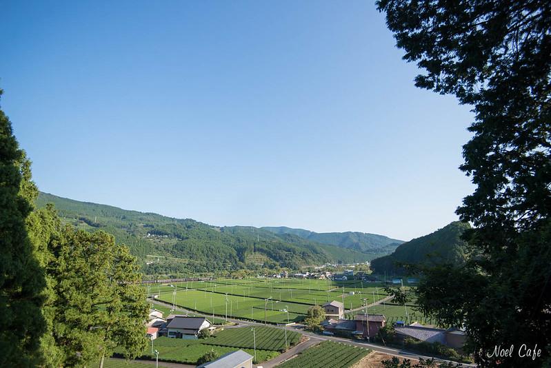 お茶の町 - town of tea plantation by Noël Café