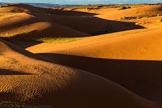 Dune Shadows   by IntrepidXJ