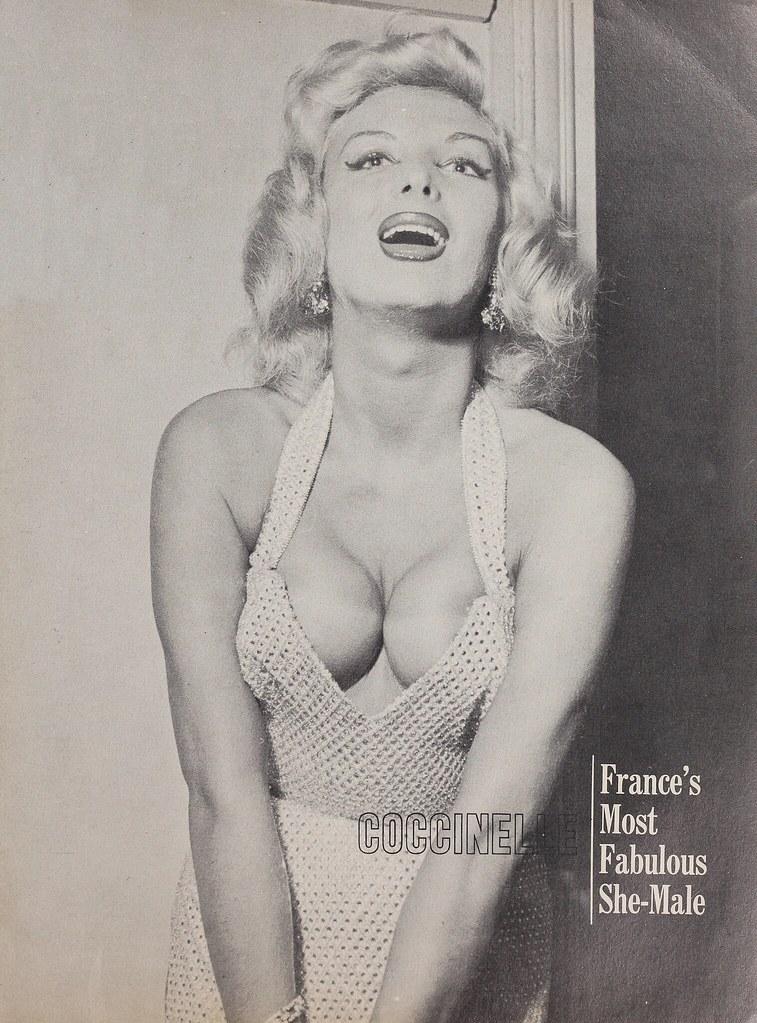 Coccinelle Jacqueline Dufresnoy