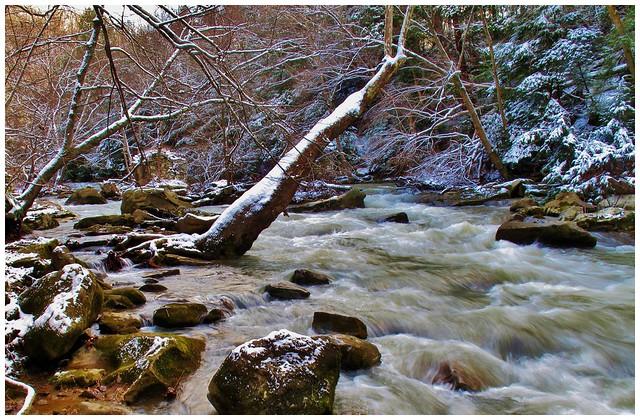 Cowanshannock Creek in Armstrong County, Pennsylvania