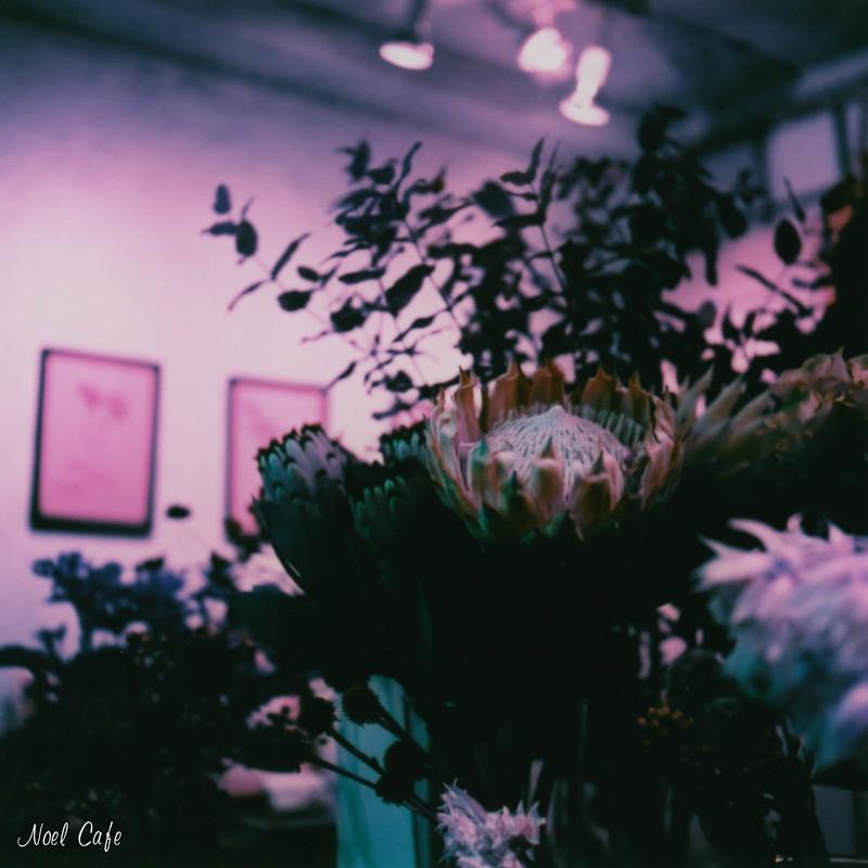 Dramatic Purple by Noël Café