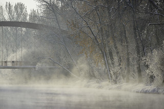 Fog and a bridge