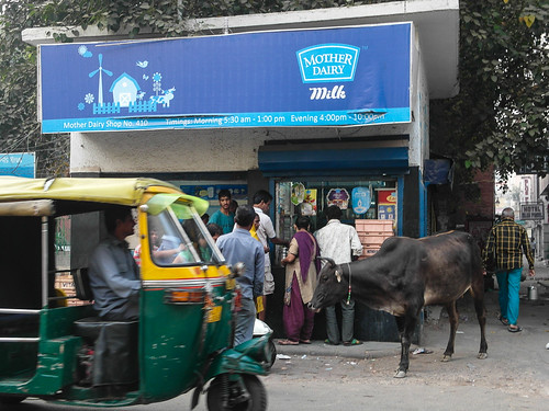 Mother Dairy store, cow and tuktuk, New Delhi 2014 | by Takemany Showfew