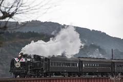 new year's train 2015-3 by Noël Café