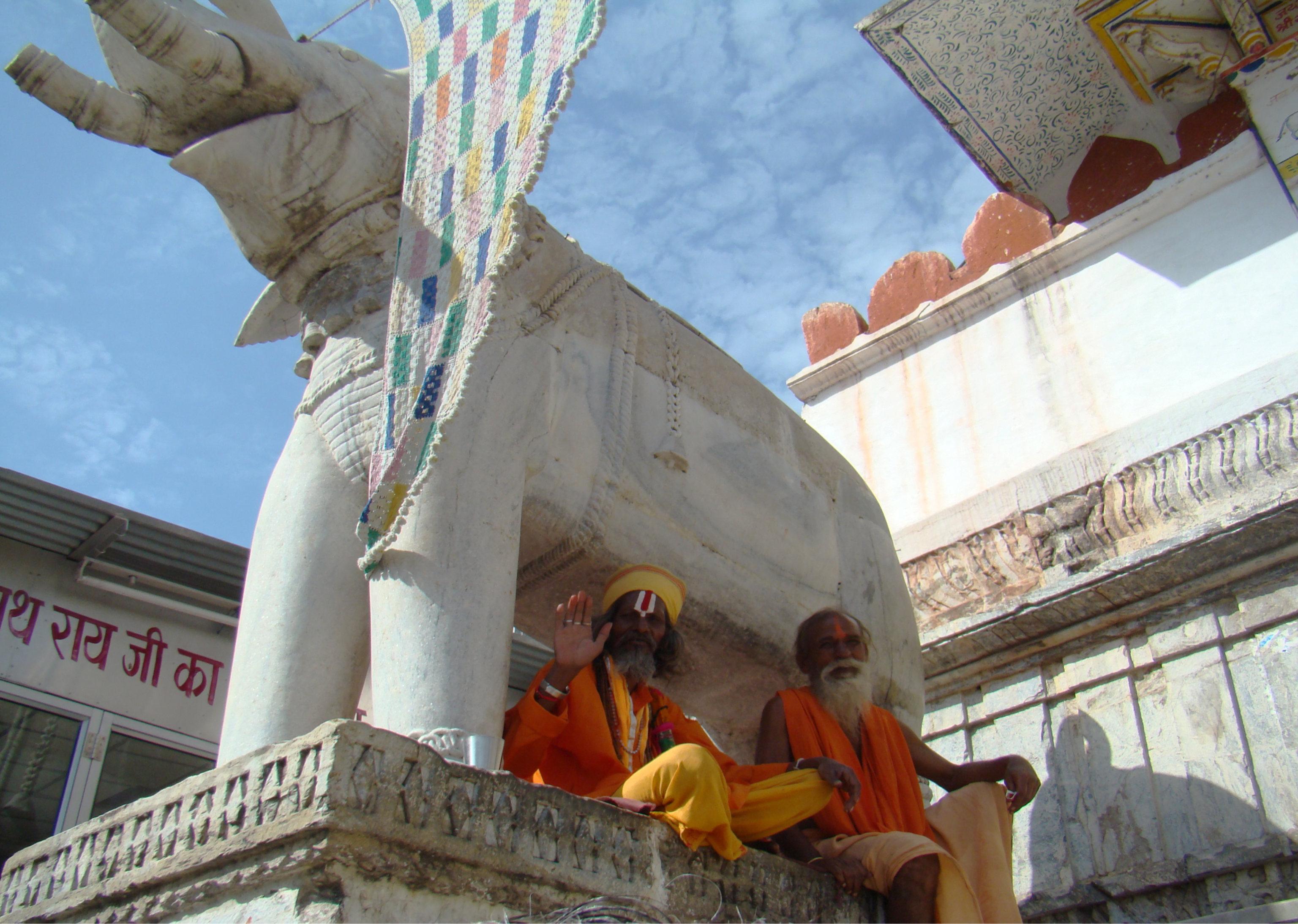 escultura elefante y su gente Udaipur India