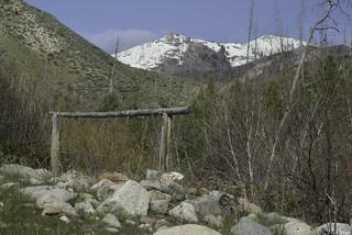 Tipton Flat Campground