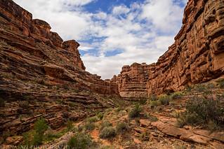 Canyon Walls   by IntrepidXJ