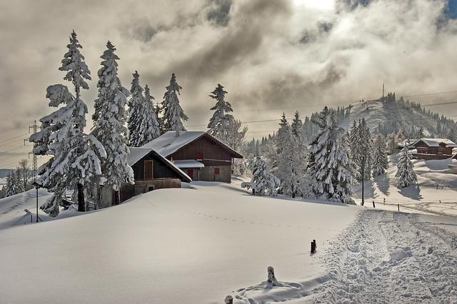 Swiss winter paradise, Paradis hivérnale suisse ,  Tête  de Ran . Canton Neuchâtel  No. 6426