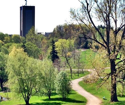 Looking towards the Dunton Building at Carleton University from the Experimental Farm