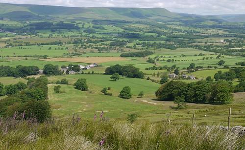 summer green grass landscape countryside meadows july lancashire hills fells land fields farms jeffreyhill forestofbowland bowlandfells areaofoutstandingnaturebeauty