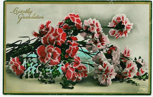 Vintage Postcard from Sweden   Carnations