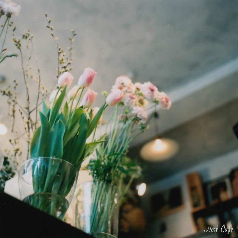 見上げたら春 by Noël Café