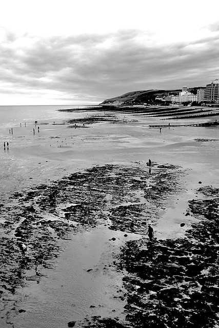 Low tide from the Pier bw