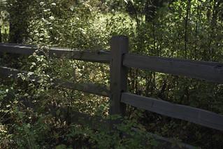 Laird Park entrance