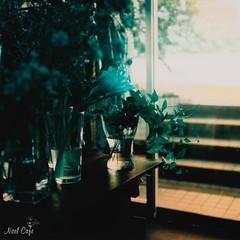 blue green green by Noël Café