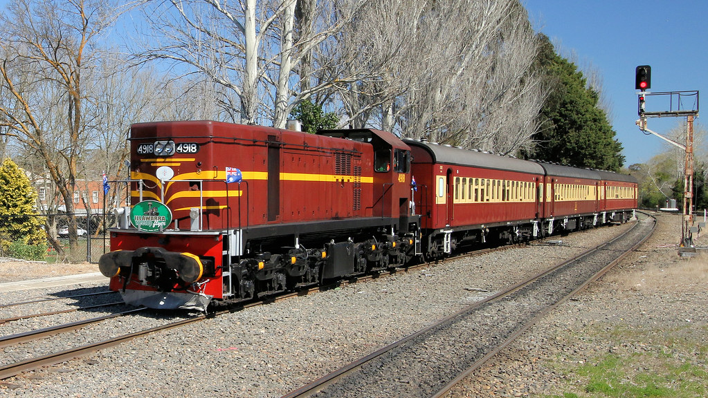 4918 leads the Cockatoo Run on the Illawarra Treetop Flyer after turmimg around at Moss Vale by Jungle Jack