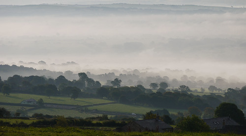 morning trees mist grass fog landscape countryside cows quote farm lancashire hills valley fields van windturbines ribblevalley knowlegreen