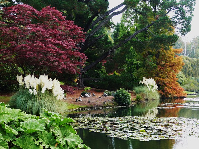Autumn Colours at Sheffield Park