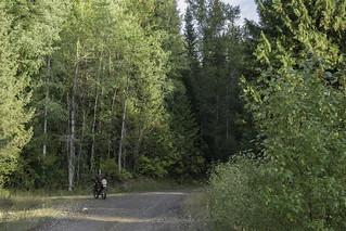 Huckleberry Mountain Road