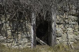 Wagner Gulch cabin