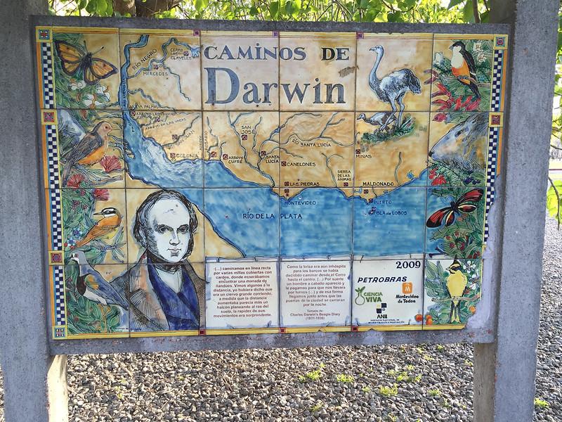 Caminos de Darwin, Montevidéu, Uruguay.