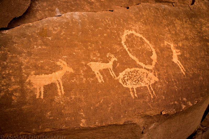 Ledge Petroglyphs
