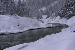 Snow along the Payette