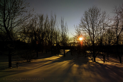 trees winter sunset sunsets orange silhouette silhouettes shadow shadows virginia stuartsdraft