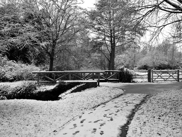 Snowy scene in Hampden Park Eastbourne