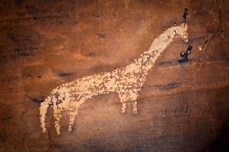 Ute Horse