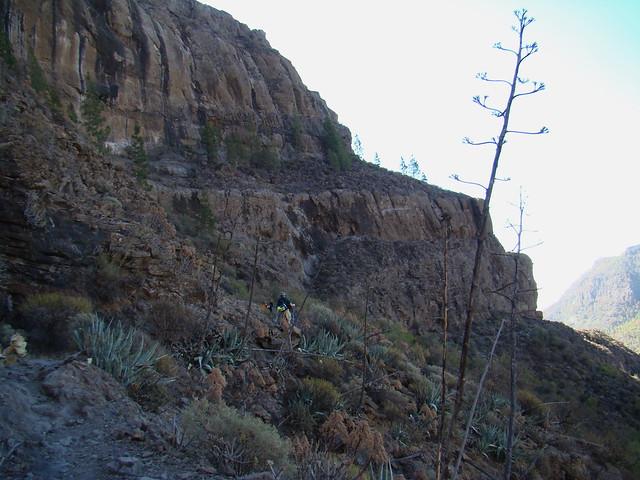 Senderismo Gran Canaria Llanos de la Pez Cruz Grande  22