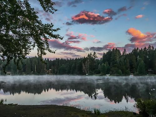 america cloud iphoneography jfflickr lake photosbydavid plant postedonfb postedonflickr postedonsmugmug reflection sky sunrise tree unitedstates usa gigharbor washington