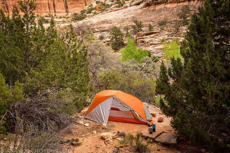 Deer Canyon Camp