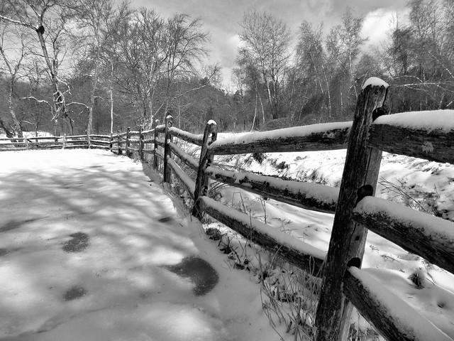 February - Winter Photo 8