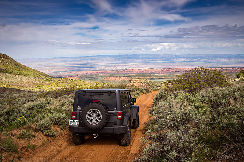 Mesa Top Drive