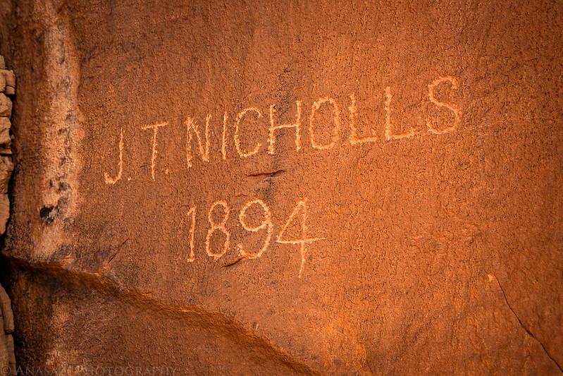 Nicholls 1894