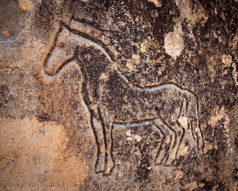 Incised Horse