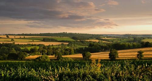 hele evening shadows countryside devon england