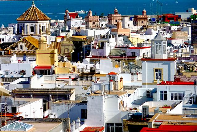 Luz,terrazas y tejados de Cádiz