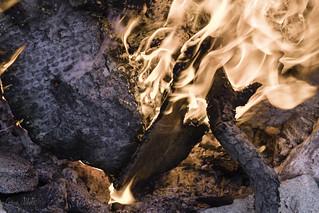 A Jeremy bark furnace