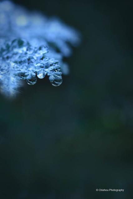 【凍雨(とうう)】