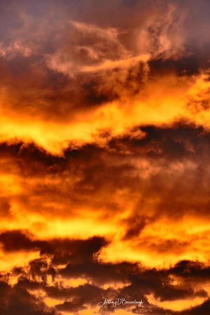 Evening Sky 134-1