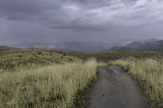 Showers on the ridge