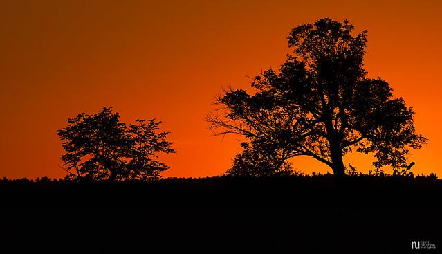DSC_1041_Sunset