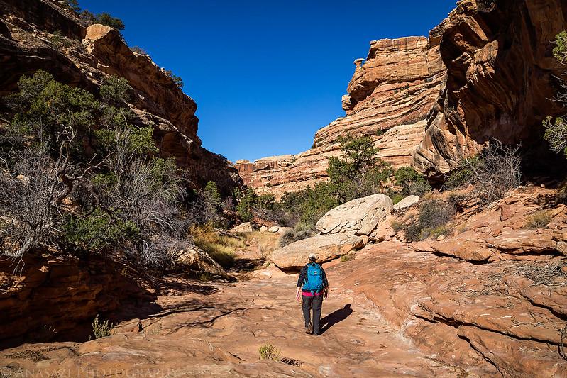 Cedar Mesa Hiker